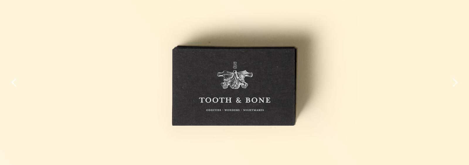 Tooth & Bone brand design by Noisy Ghost Co.